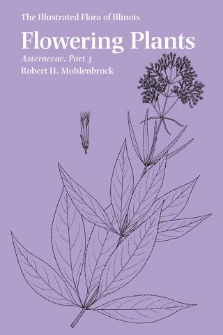Flowering Plants: Asteraceae, Part 3