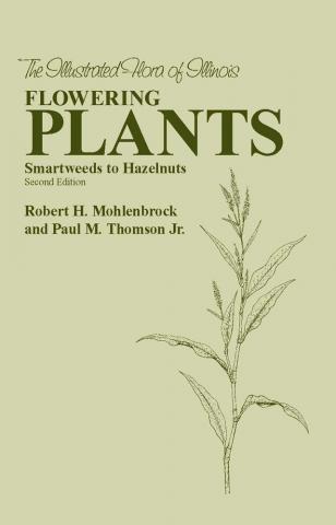 Flowering Plants: Smartweeds to Hazelnuts